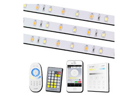Led strip dual white